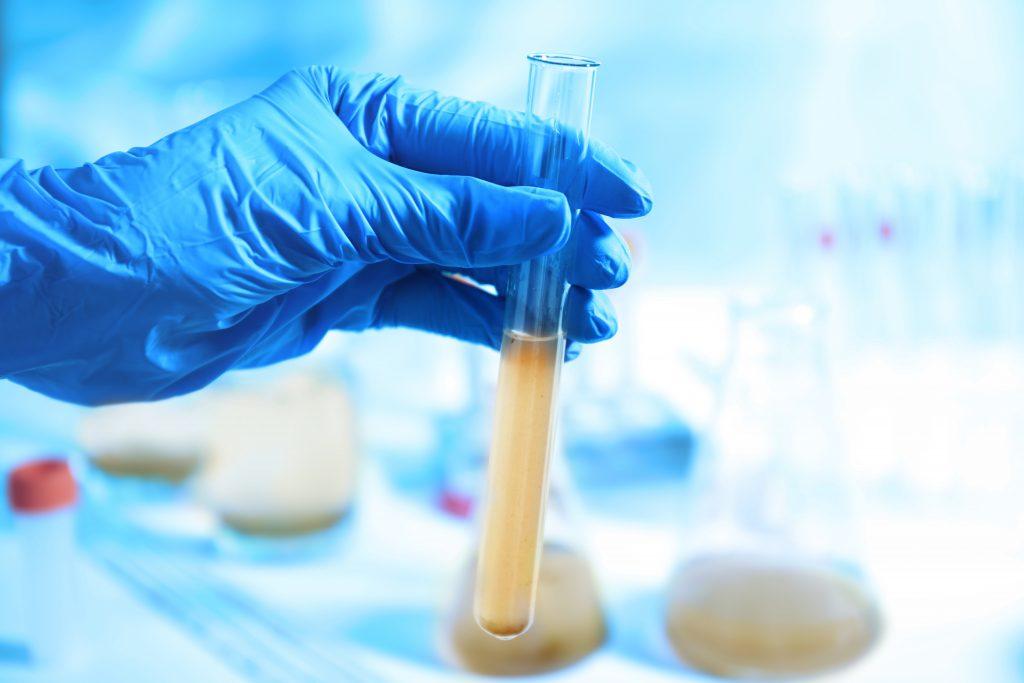 Micro Biological Testing
