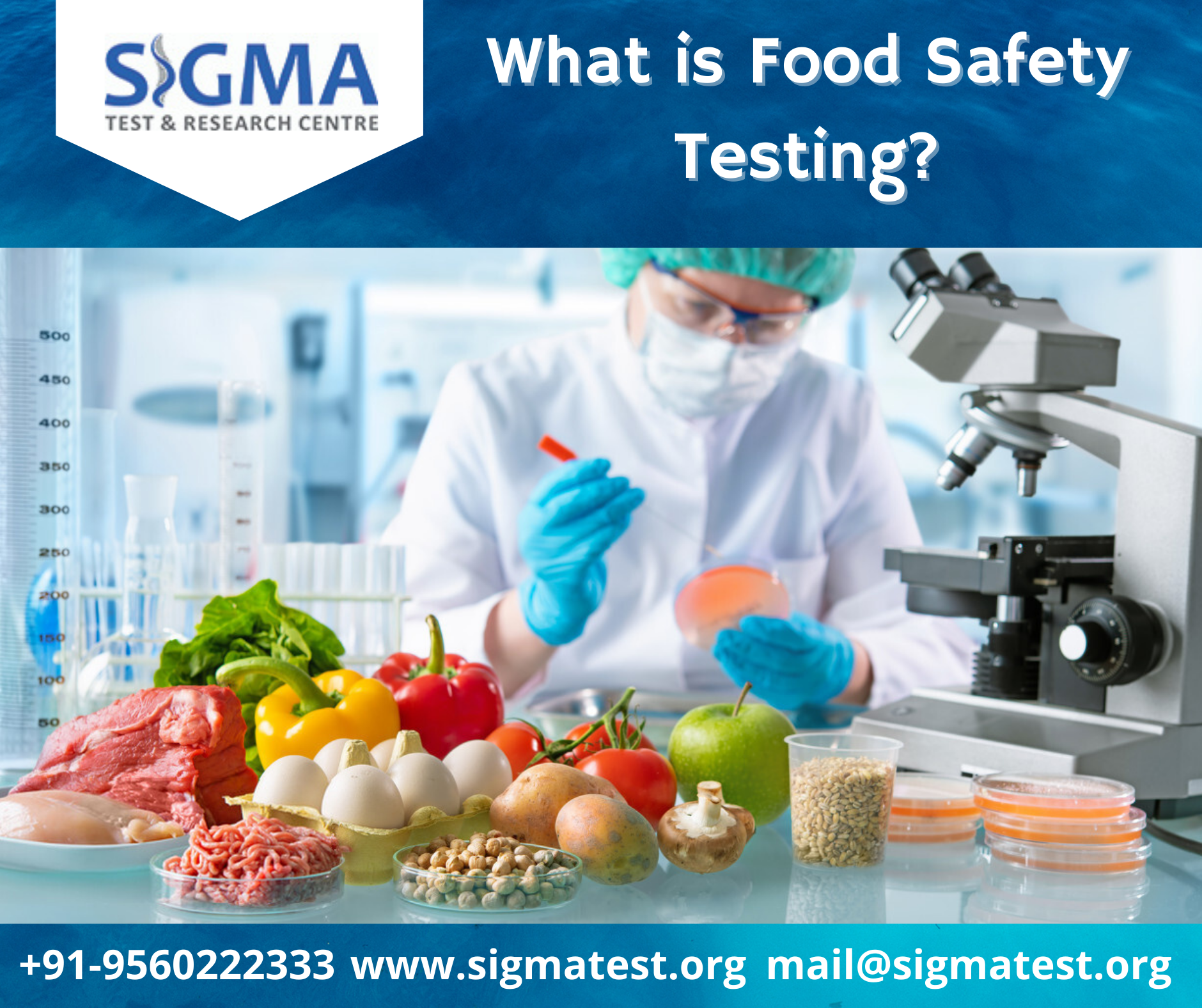 Food Safety Testing